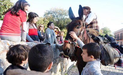 mulari viaggi con il mulo turismo lento